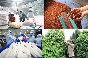 Tổng kim ngạch xuất nhập khẩu nông nghiệp 7 tháng đạt gần 39.5 tỷ USD