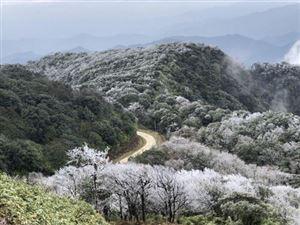 Băng phủ trắng đỉnh Phia Bắc ở Cao Bằng