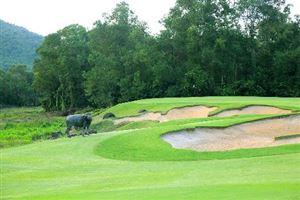 Việt Nam áp đảo danh sách resort sân golf tốt nhất châu Á