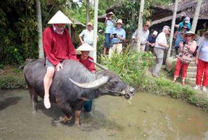 Vì sao du lịch nông nghiệp ở Việt Nam chưa phát triển