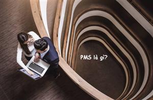 PMS là gì? 6 Điều cần biết về PMS trong hoạt động kinh doanh khách sạn